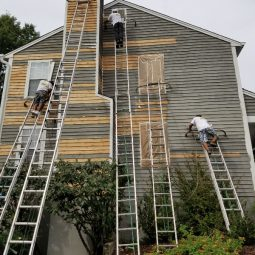 siding painting job